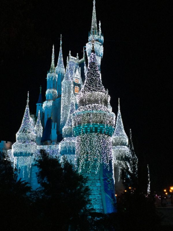 Disney World Lighted Castle