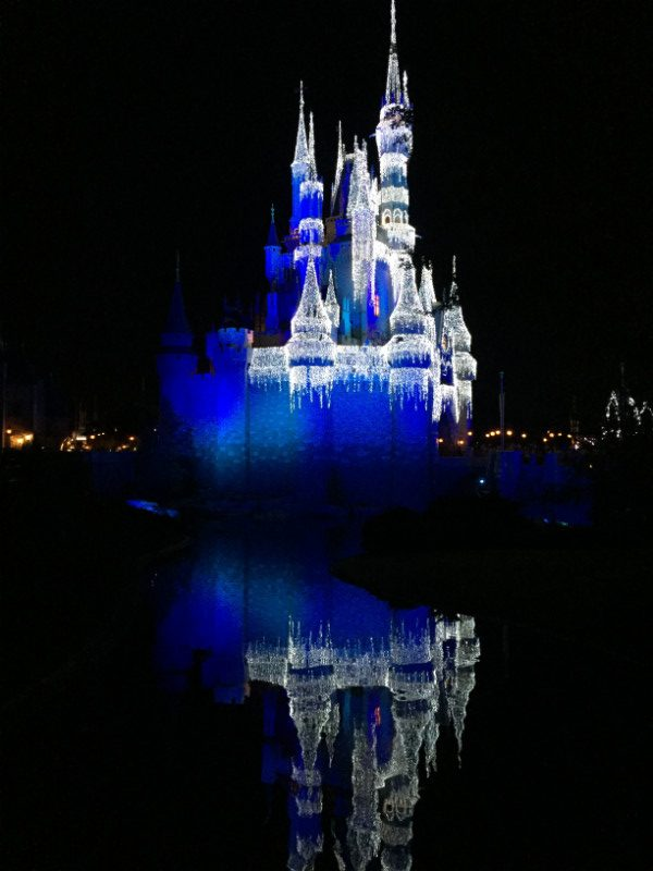 Disney World Lighted Castle Reflection